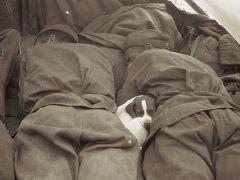 Спят уставшие бойцы ...