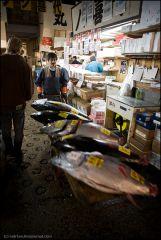 Продажа рыбы на аукционе