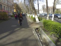075. Пешеходы