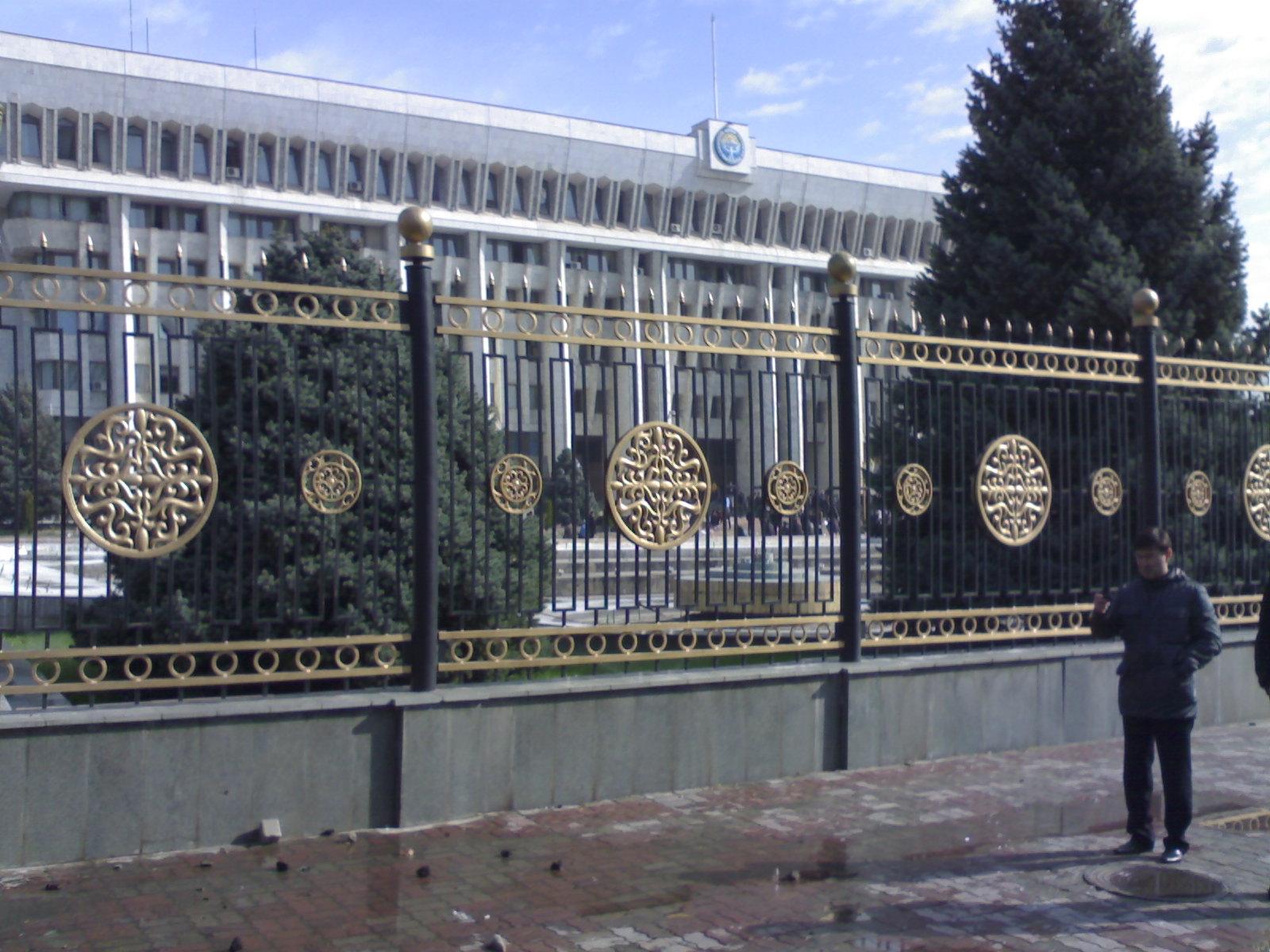 038. Ограда дома правительства.