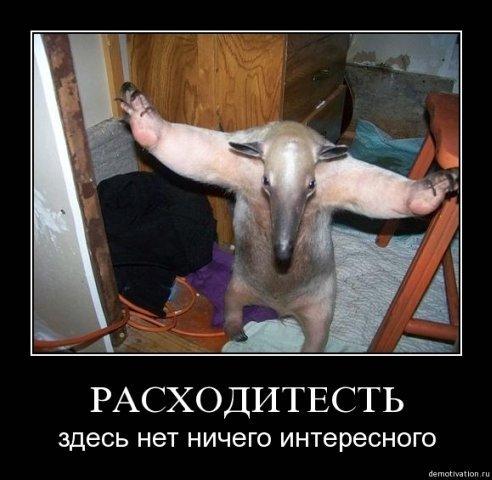 x_82904358.jpg