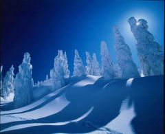 snow_mop.jpg
