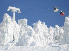 snow_mp1.jpg