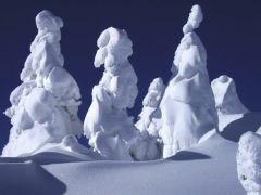 snow_mot.jpg