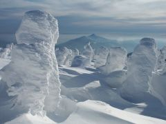 snow_mpa.jpg