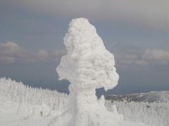snow_moy.jpg