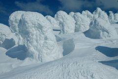 snow_moq.jpg