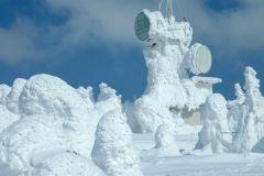 «Снежные монстры» Японии