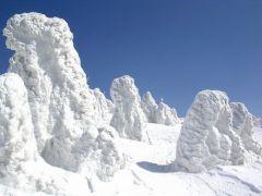 snow_mov.jpg