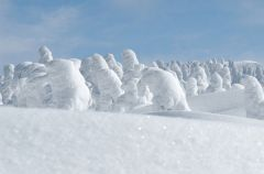 snow_mp6.jpg