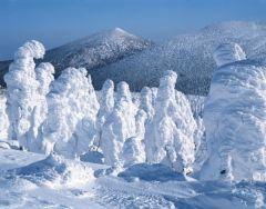 snow_mp4.jpg