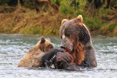 Семейная рыбалка.jpg