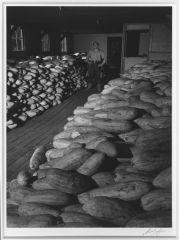 Лагерь для интернированных японцев 1943-44 годы