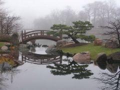 Японский сад 21