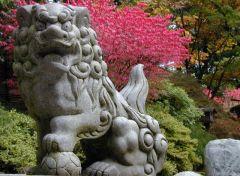Японский сад 20