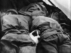 Георгий Липскеров: Пусть солдаты немного поспят