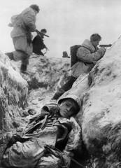 Всеволод Тарасевич: Начало наступления на Ленинградском фронте