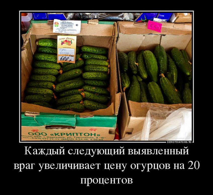 pre_1457888361__631.jpg