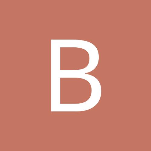 Borodise