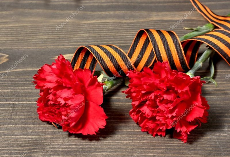 depositphotos_11194722-stock-photo-carnations-and-st-georges-ribbon.jpg