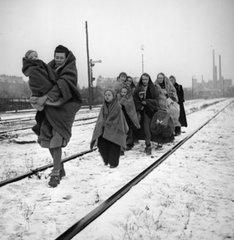 Изгнаны и убиты. Депортация немцев из Польши.