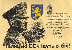 Дивизия ваффен СС Галичина.